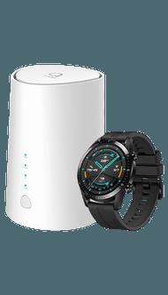 Alcatel LINKHUB LTE + Huawei Watch GT 2 46mm